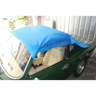 Protector for convertible top